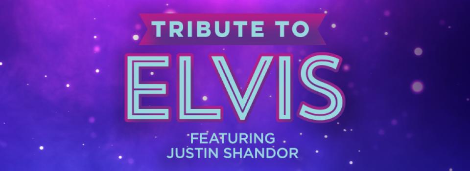 Justin Shandor as Elvis